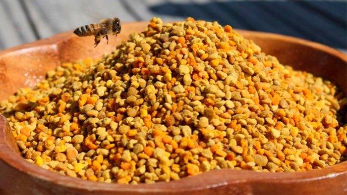 как употреблять пыльцу пчелиную взрослым
