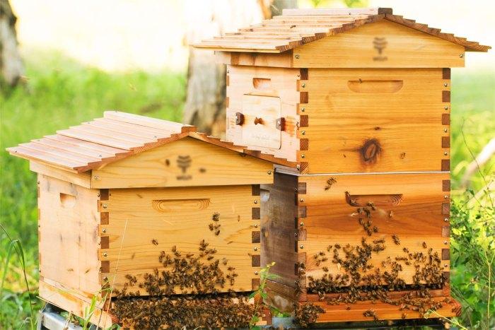 улей для пчел своими руками
