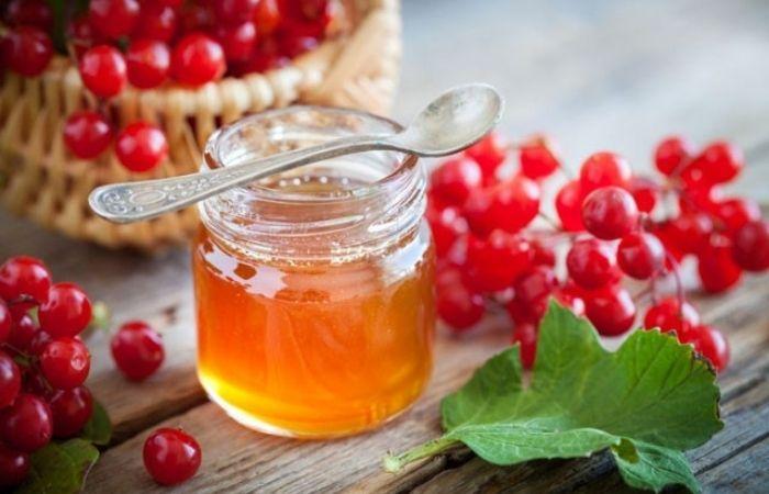 калина с медом полезные свойства