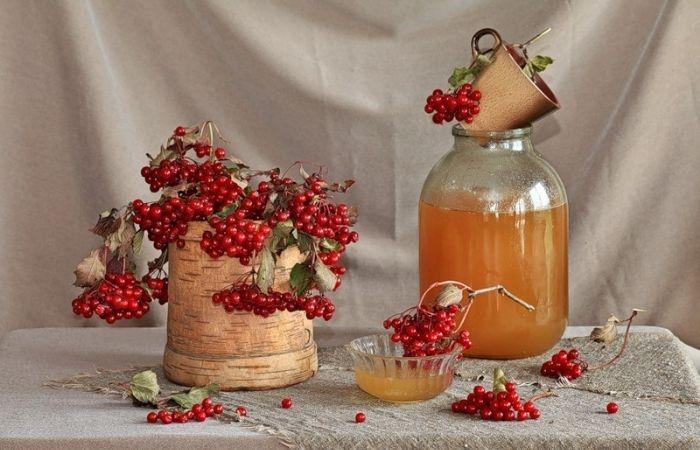 как сделать калину с медом